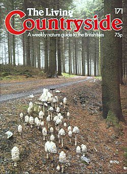 Living Countryside magazine cover